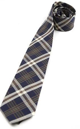入住和退房领带博塔