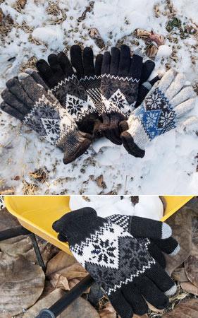 双色调的配色方案租赁衬里的手套雪后