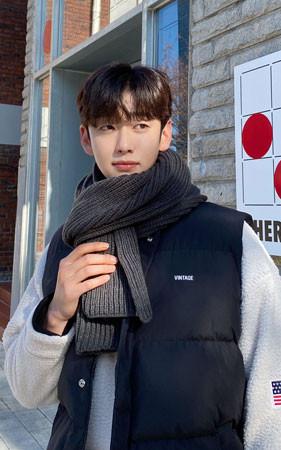 基本的Hachi围巾
